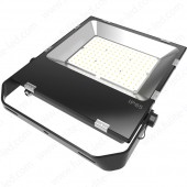 100W LED Flood Light FLT-FL100-P